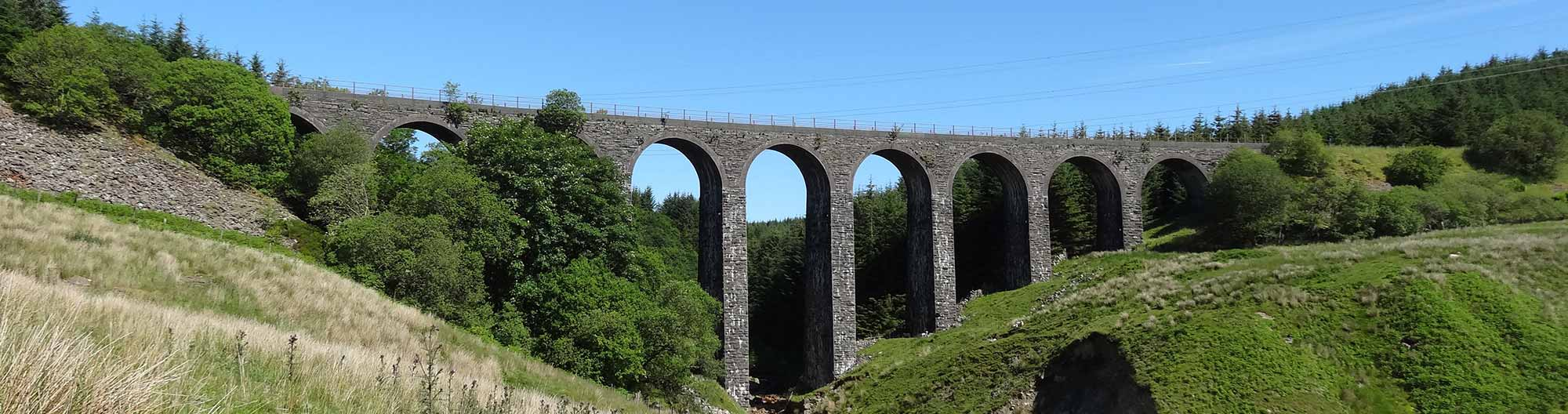 Cwm Prysor Viaduct from the River