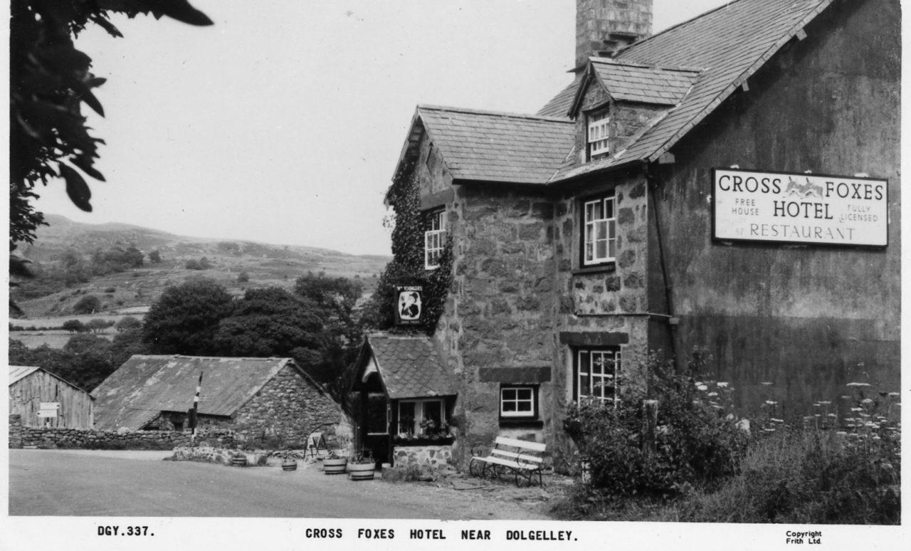 Cross Foxes Postcard 2