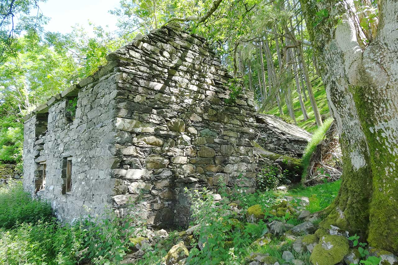 The Ruins of Tan y Fedw.
